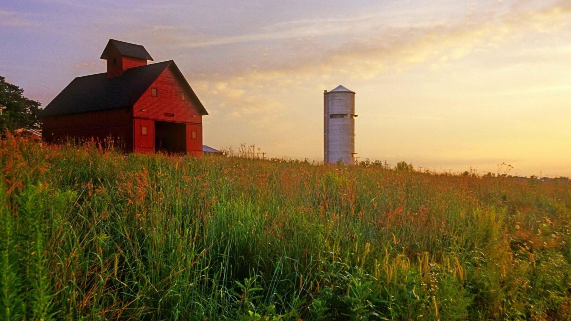 Cele mai bune solutii pentru depozitarea produselor agricole