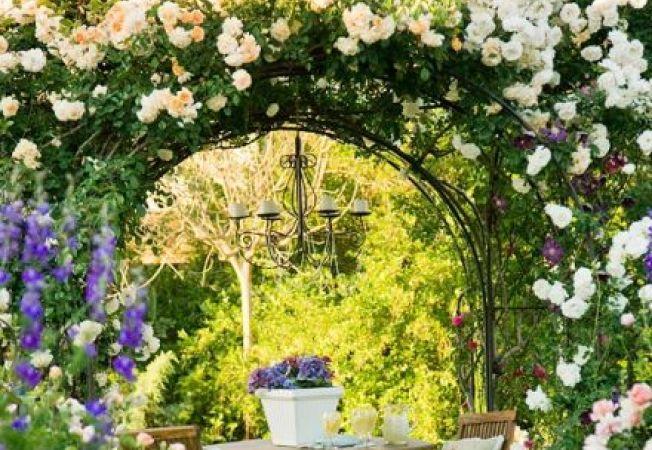 Idei pentru a crea o gradina frumoasa cu trandafiri